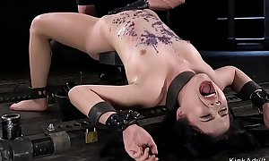 Oriental babe all about round metal device anal toyed